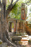 Ruins in the forest early morning, ancient city of Angkor Royalty Free Stock Photo