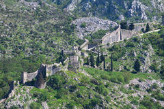 Ruins of the fortress over Kotor Stock Photography