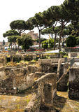 Ruins of the Forum Trajan in Rome Royalty Free Stock Images