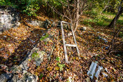 Ruins and garbage in the forest Royalty Free Stock Photos