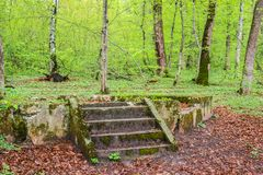 The ruins of a gazebo in the forest royalty free stock images