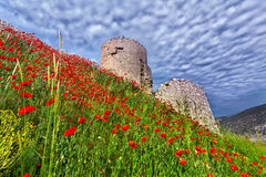 The ruins of the Genoese fortress Stock Photo