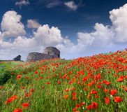 The ruins of the Genoese fortress Royalty Free Stock Image