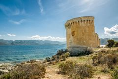 Genoese tower at Mortella near St Florent in Corsica. Ruins of the Genoese tower at Mortella beside the mediterranean sea on the rocky coastline of the Desert stock images