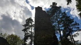 Ruins of walls on castle Louzek. Ruins of Gothic castle Louzek in Czech Republic hidden in forest stock footage