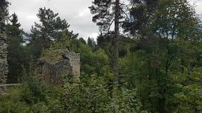 Ruins of walls on castle Louzek. Ruins of Gothic castle Louzek in Czech Republic hidden in forest stock video footage