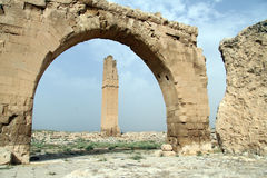 Ruins of Great mosque Royalty Free Stock Photo
