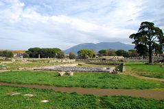 Ruins of Greek temples. Mountains behind the ruins of the Roman town and ancient Greek temples at Paestum in Italy royalty free stock photo