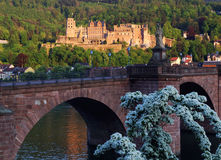 The ruins of the Heidelberg Castle at sunset Stock Photo
