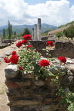 The ruins of Heraclea Lyncestis, Macedonia. The ancient Roman ruins of Heraclea Lyncstis, Macedonia are located just outside Bitola in Macedonia Royalty Free Stock Photos