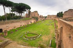 Ruins of the Hippodrome of Domitian in ancient Rome, Italy. Hill palatino palatine roman forum site old travel landscape architecture history landmark historic royalty free stock image