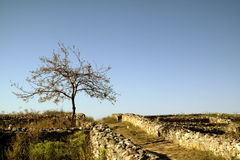 Ruins of Histria Fortress Stock Images
