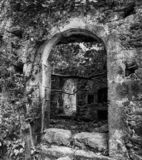 Ruins of house in forest. Ruined building in Mili gorge at Crete island, Greece royalty free stock photos