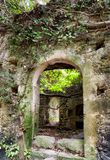 Ruins of house in forest. Ruined building in Mili gorge at Crete island, Greece royalty free stock images