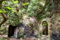Ruins of house in forest. Ruined building in Mili gorge at Crete island, Greece stock photo
