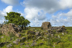 Ruins on Islay. Royalty Free Stock Photography