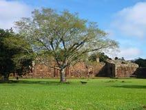 Ruins of jesuit missions san ignacio mini in misiones in argentina. Historic ruins of jesuit missions san ignacio mini in misiones in argentina Royalty Free Stock Images
