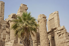 Ruins at Karnak Temple in Luxor Royalty Free Stock Photos