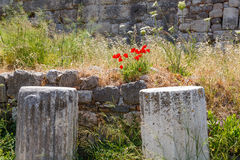Ruins on Kos, Greece Stock Photos