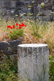 Ruins on Kos, Greece Royalty Free Stock Image