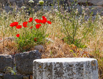 Ruins on Kos, Greece Stock Photo