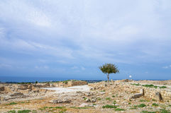 Ruins of Kourion Royalty Free Stock Image