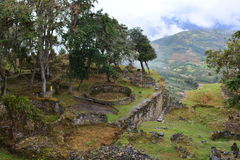Ruins of Kuelap, the lost city of Chachapoyas, Peru. The lost city of Kuelap belonged to the Chachapoyas indian tribe, and is one of the most important royalty free stock photo
