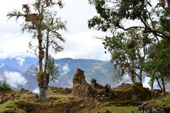 Ruins of Kuelap, the lost city of Chachapoyas, Peru. The lost city of Kuelap belonged to the Chachapoyas indian tribe, and is one of the most important royalty free stock photos