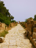 Ruins of Leptis Magna, Libya - Roman Road. The spectacular stone road and ruins of the roman city of Leptis Magna, in Libya, North Africa, in summer sunny day Royalty Free Stock Photos