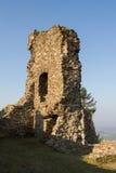 Ruins of Lichnice Castle Stock Image