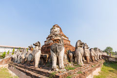 Ruins lion statue in Ayutthaya Historical Park, Thailand Royalty Free Stock Photography