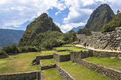Ruins of Machu Picchu. View of the ruins of Machu Picchu and Sacred Valley in Peru Stock Images