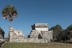 Ruins of the mayan city tulum, quintana roo, mexico.  stock images