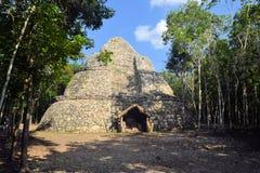 Ruins of Mayan pyramid in jungle, Coba, Yucatan Royalty Free Stock Photo