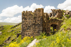 Ruins of the medieval Amberd castle Stock Photo