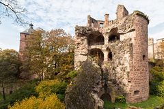 Ruins of medieval castle -  Heidelberg. Germany Royalty Free Stock Photography
