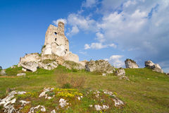 Ruins of medieval castle Mirow in Poland Royalty Free Stock Photography