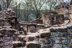 Ruins of medieval castle Wangenbourg on the top of hill, Alsace, Stock Photography