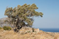 Ruins of the medieval Venetian fort Antimachia, Kos island. Greece Royalty Free Stock Photo