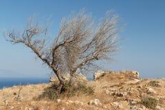 Ruins of the medieval Venetian fort Antimachia, Kos island. Greece Royalty Free Stock Image