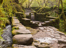 Ruins in the middle of the forest in Galicia. Royalty Free Stock Photo