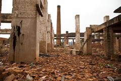 Free Ruins Of A Old Plant Stock Photography - 23924502