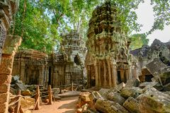 Free Ruins Of Ta Prohm Temple, Angkor, Siem Reap, Cambodia. Big Roots Over Walls And Roof Of A Temple. Stock Photo - 150584020