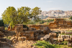 Free Ruins Of The Temples In The Ancient City Of Agrigento, Sicily Royalty Free Stock Photography - 82390597