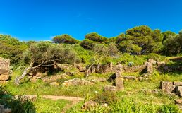 Free Ruins Of Tipasa, A Roman Colonia In Algeria, North Africa Stock Image - 125935401