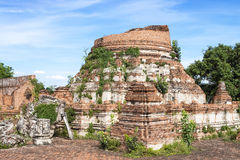 Ruins of the old brick pagoda in Thailand. Stock Photo