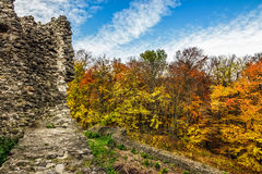 Ruins of an old castle in the forest. Stone wall of an old ruined castle in the autumn forest with foliage Stock Photo