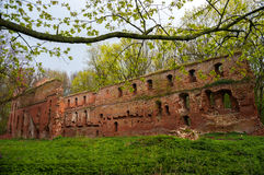 The ruins of the old castle made of brick in a clearing in the woods Stock Photography
