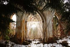 Ruins of the old church in forest in sunset light royalty free stock images