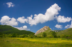 Ruins of an old fotress in Romania Royalty Free Stock Photo